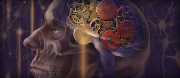 Luiz Paulo comenta reportagem sobre descoberta de proteína que pode ajudar a desvendar o Mal de Alzheimer e criar novas drogas para combatê-lo